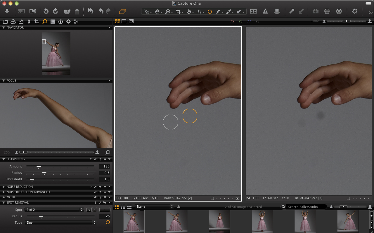 Capture One Pro 6: Spot removal