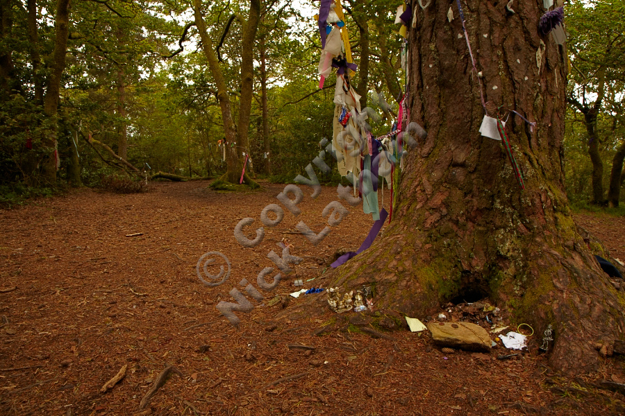 Fairy gifts on the summit of Doon Hill