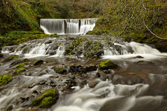 waterfall force rock water stream river flow tree movement wood woodland Lakes Lake District Ambleside