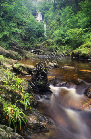 Scotland Trossachs river stream burn brook flow water rock tree foliage wood woodland nature