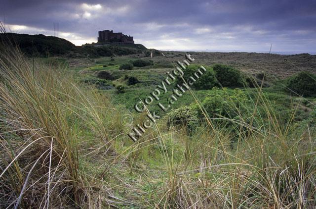 grass Northumberland cloud cloudy overcast coast sea coastal