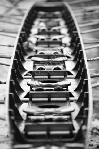 rowing boat seat competition prepare sport monochrome