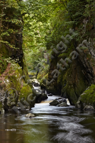 River Conwy wood tree gorge moss rock flow landscape scenic Snowdonia National Park beauty spot rapid cascade ravine