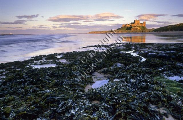 Bamburgh Castle and North Beach 2