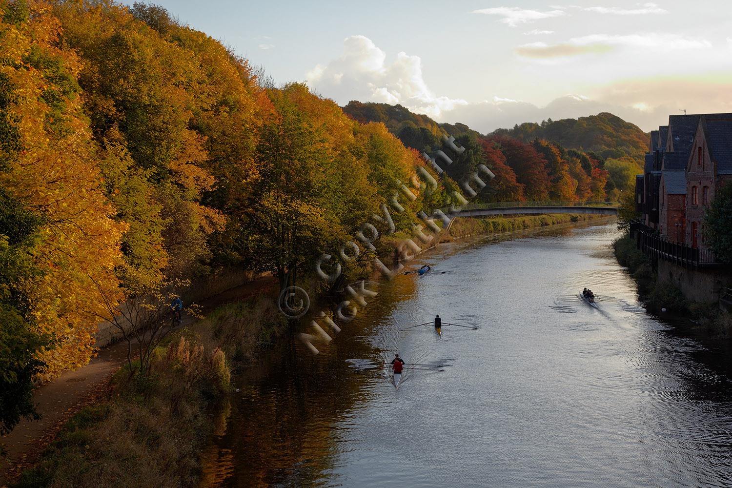 River Wear - Autumn rowers