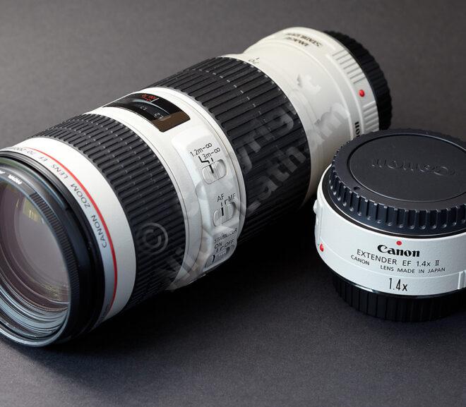 Choosing a Canon 70-200mm lens