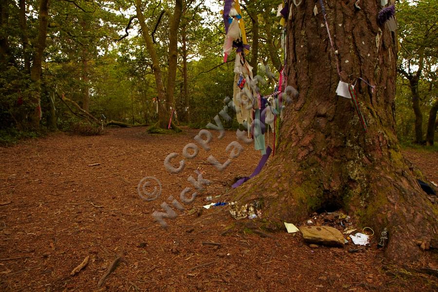 Fairy gifts on the summit of Doon Hill