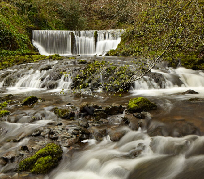 Stockghyll Force